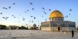 Gençlerden İşgalci İsrail'e Kapak